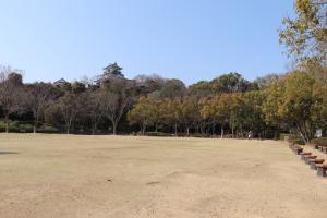 浜松城公園中央芝生広場