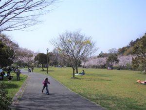 花川運動公園