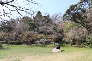 浜松城公園石舞台