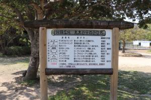 浜松城公園冒険広場